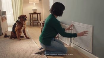 Filtrete TV Spot, 'Let's Clear the Air: Dog' - Thumbnail 7