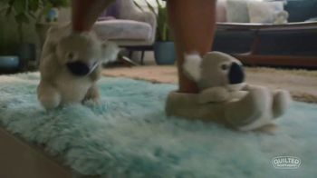 Quilted Northern Ultra Plush TV Spot, 'Cozy Koalas' - Thumbnail 2