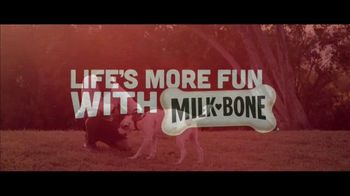 Milk-Bone TV Spot, 'Goldfish Jogging' - Thumbnail 8