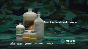Merck Animal Health Cattle Vaccines TV Spot, 'Fewer Reactions' - Thumbnail 7