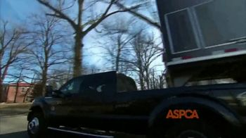 ASPCA TV Spot, 'Giving Tuesday Now: We Haven't Forgotten' - Thumbnail 2
