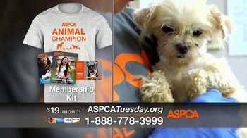 ASPCA TV Spot, 'Giving Tuesday Now: We Haven't Forgotten' - Thumbnail 8