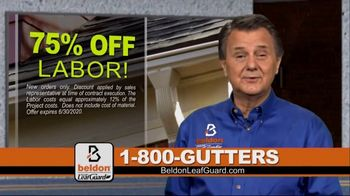 Beldon LeafGuard TV Spot, 'If Your Gutters Look Like This: 75 Percent Off Labor' - 1 commercial airings