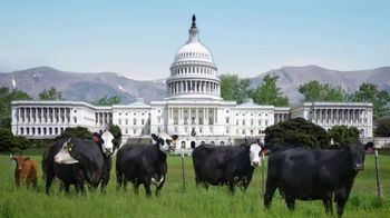 National Cattlemen's Beef Association (NCBA) TV Spot, 'Government Policy Updates' - Thumbnail 2