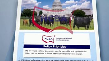 National Cattlemen's Beef Association (NCBA) TV Spot, 'Government Policy Updates' - Thumbnail 6