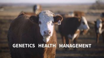 American Hereford Association TV Spot, 'Real Money, Real Results' - Thumbnail 7
