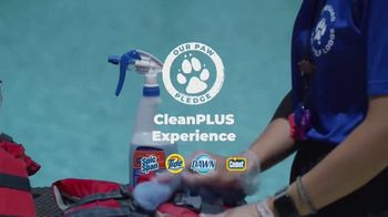 Great Wolf Lodge TV Spot, 'Our Paw Pledge' - Thumbnail 4