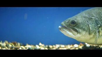 Berkley Fishing PowerBait TV Spot, 'Scientifically Proven' - Thumbnail 3