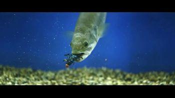 Berkley Fishing PowerBait TV Spot, 'Scientifically Proven'