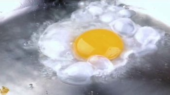 Maaco Overall Paint Sale TV Spot, 'Fried Egg: $599'