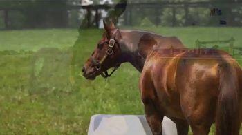 Claiborne Farm TV Spot, 'Runhappy: Breeders' Cup Sprint' - Thumbnail 9