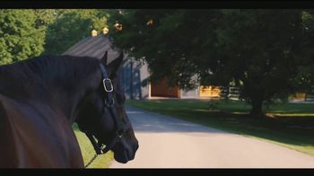 Claiborne Farm TV Spot, 'Legacy' - Thumbnail 7