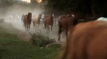 The Dude Ranchers' Association TV Spot, 'Discover the American Wilderness by Horseback' - Thumbnail 1