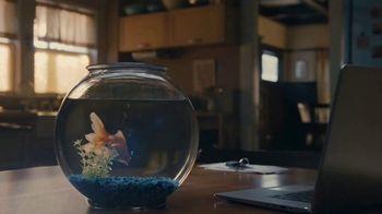 Apartments.com TV Spot, 'Slippery Slope to Greatness' Featuring Jeff Goldblum - Thumbnail 1