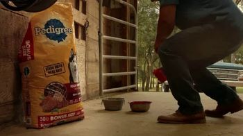Tractor Supply Co. TV Spot, 'Stronger Together' - Thumbnail 3