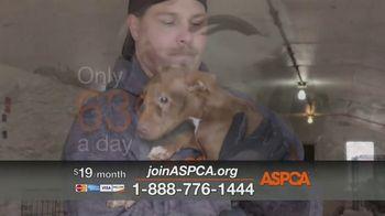ASPCA TV Spot, 'Dog Fighting: Jack' - Thumbnail 7