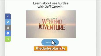 Litton Entertainment TV Spot, 'Trusted Entertaining Shows' - Thumbnail 7