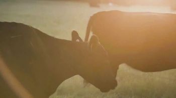 National Grazing Lands Coalition TV Spot, 'Here for You' - Thumbnail 8