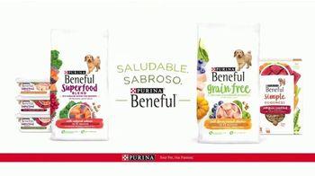Purina Beneful Simple Goodness TV Spot, 'Carne real' [Spanish] - Thumbnail 7