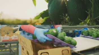Sysco TV Spot, 'Adversity'