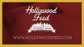 Hollywood Feed TV Spot, 'Same Day Delivery' - Thumbnail 10