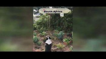 Viacom International Studios TV Spot, 'Historias de balcón: España, Sudáfrica y Polonia' [Spanish]