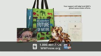 World Wildlife Fund TV Spot, 'WWF on TV: Jaguars' - Thumbnail 9