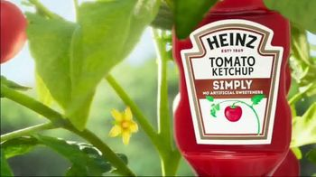 Heinz Ketchup TV Spot, 'There's a Heinz Ketchup for Everyone' - Thumbnail 4