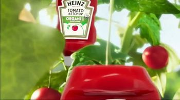 Heinz Ketchup TV Spot, 'There's a Heinz Ketchup for Everyone' - Thumbnail 7