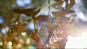 STIHL TV Spot, 'Fall: Homeowners Series' - Thumbnail 1