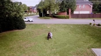 Invisible Fence TV Spot, 'Protection: Stay Safe at Home' - Thumbnail 7
