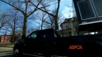 ASPCA TV Spot, 'We Haven't Forgotten About the Animals' - Thumbnail 1