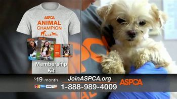 ASPCA TV Spot, 'We Haven't Forgotten About the Animals' - Thumbnail 7