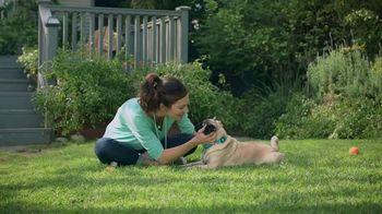 Apoquel TV Spot, 'Talking Dog' - Thumbnail 9