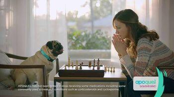 Apoquel TV Spot, 'Talking Dog' - 6252 commercial airings