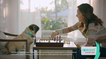 Apoquel TV Spot, 'Talking Dog' - Thumbnail 8