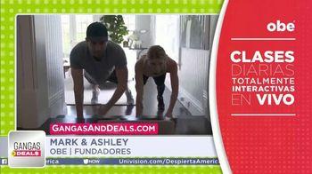 Gangas & Deals TV Spot, 'obé' con Aleyda Ortiz [Spanish] - Thumbnail 2