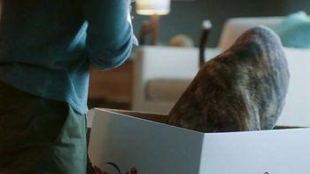 PetSmart TV Spot, 'Delivered to Your Door' - Thumbnail 10