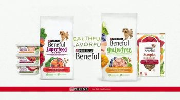 Purina Beneful Simple Goodness TV Spot, 'Real Meat' - Thumbnail 10