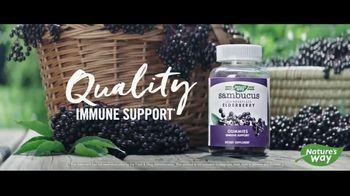 Nature's Way Sambucus Elderberry Gummies TV Spot, 'Quality Ingredients' - Thumbnail 8