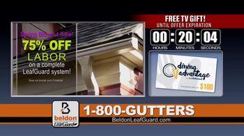 Beldon LeafGuard Spring Blowout Sale TV Spot, 'Sean' - Thumbnail 5