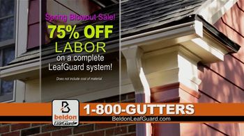 Beldon LeafGuard Spring Blowout Sale TV Spot, 'Ladder-Related Accidents' - Thumbnail 3