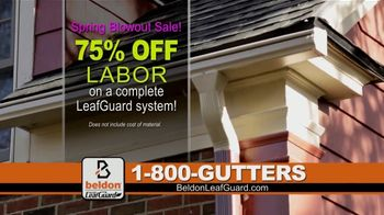 Beldon LeafGuard Spring Blowout Sale TV Spot, 'Ladder-Related Accidents' - Thumbnail 4