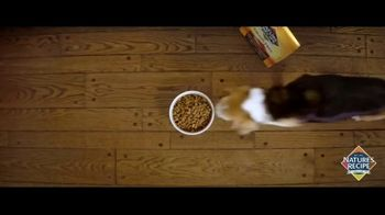 Nature's Recipe TV Spot, 'Measured in Wags: Prime Blends' - Thumbnail 2