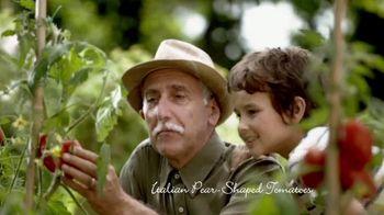 Alessi Marinara Sauce TV Spot, 'Made Authentically Italian' - Thumbnail 4