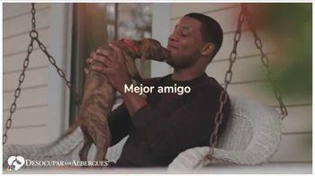 Clear the Shelters TV Spot, 'Mejor amigo' [Spanish] - Thumbnail 2