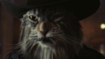 Arm & Hammer Clump & Seal AbsorbX Cat Litter TV Spot, 'Odors? Adios.' - Thumbnail 9