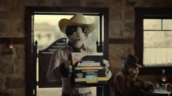 Arm & Hammer Clump & Seal AbsorbX Cat Litter TV Spot, 'Odors? Adios.' - Thumbnail 5