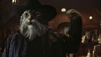 Arm & Hammer Clump & Seal AbsorbX Cat Litter TV Spot, 'Odors? Adios.' - Thumbnail 6