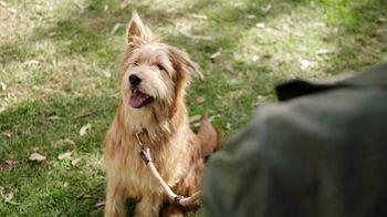 Consumer Cellular TV Spot, 'Dog Park: First Month Free'
